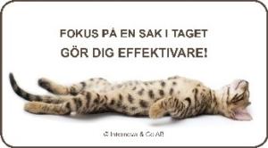 lankbild-fokus-pa-en-sak-i-taget-gor-dig-effektivare