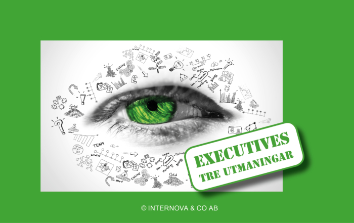 Bloggbild - Executives tre utmaningar