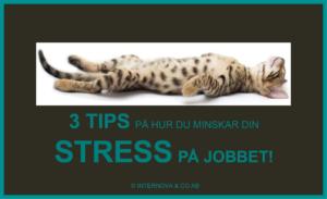 3 tips på hur du minskar din stress på jobbet