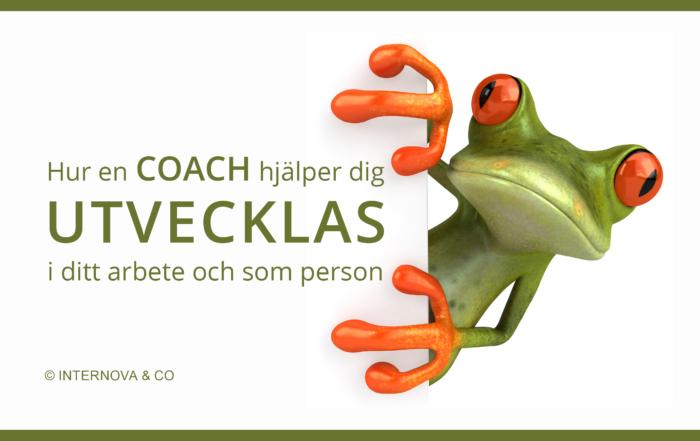 Hur en COACH hjälper dig UTVECKLAS i ditt arbete och som person - bloggbild maj
